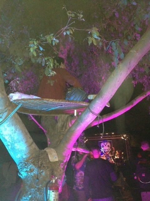 There were no rules against climbing trees! NO RULES! Ed. Note: There were some rules.
