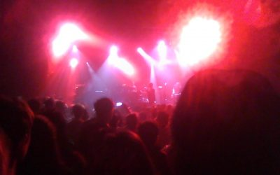 The Party Boy Wolf Diaries, Chapter 2 - Foals at El Rey