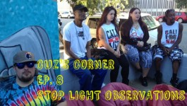 Cuz's Corner Ep. 8 - Stoplight Observations